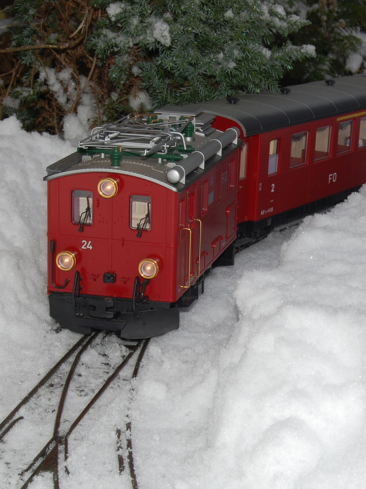 G Scale Loco in the Snow